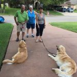 Dudley and Charlie learning how to sit with positive reinforcement training with their owners and Sandy instructing.
